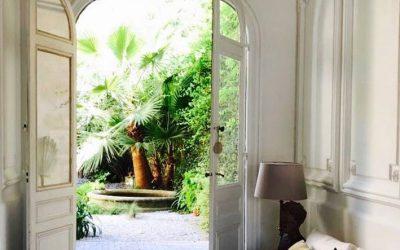 Comment choisir un palmier: nos 5conseilspour trouver la perle rare