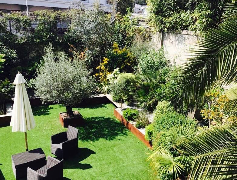 Comment planter un olivier | Sol, exposition, arrosage… On vous dit tout!