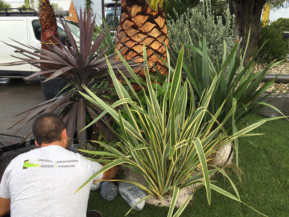 jardin-installation-salon