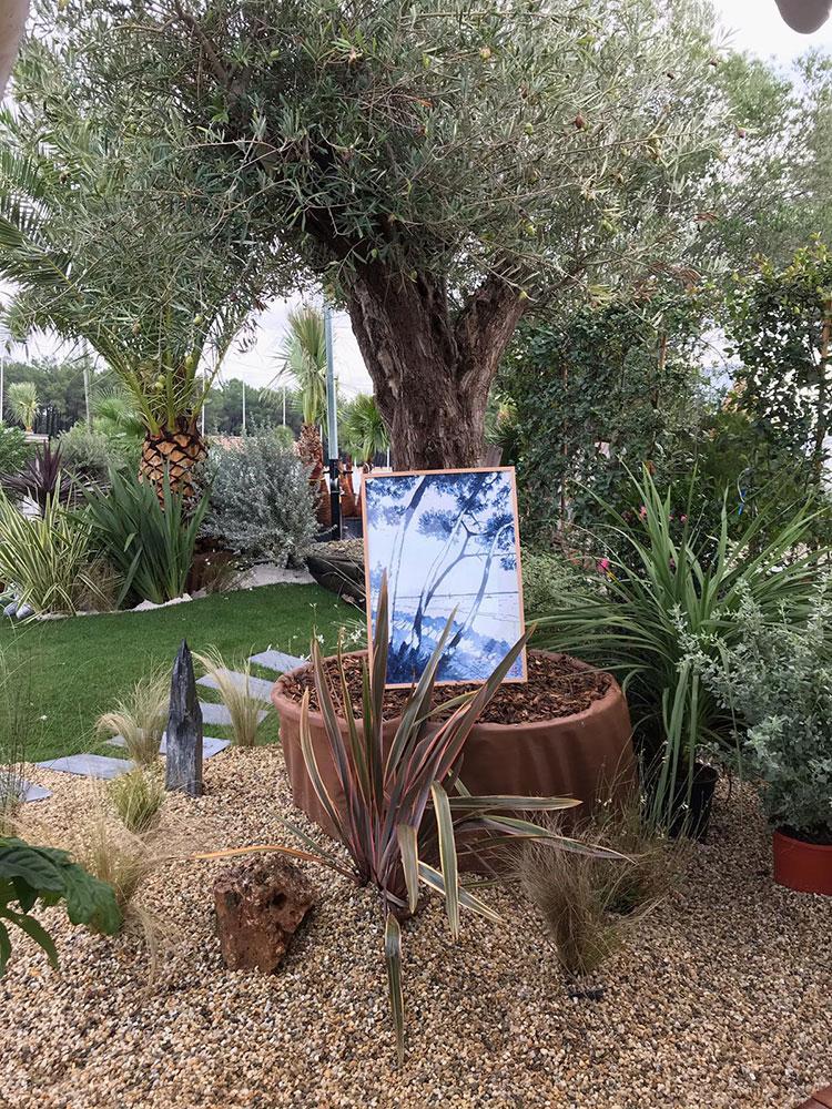 jardin-olivier