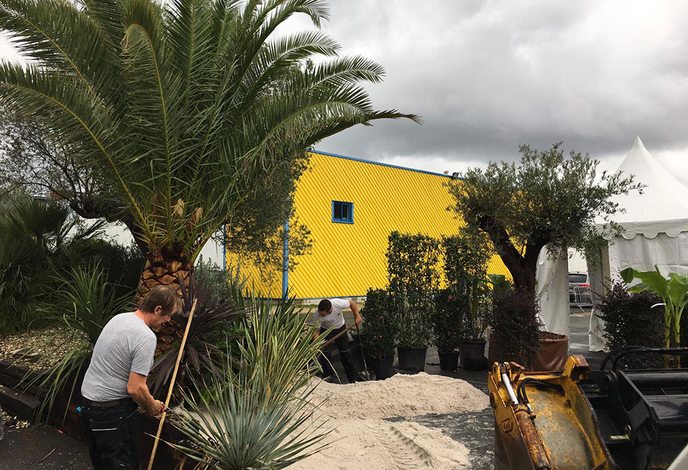 jardin-preparation